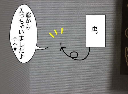 10280001.jpg